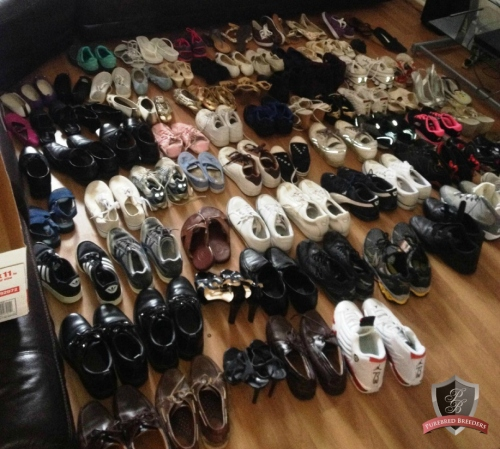 shoe drive 3